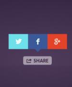 beautiful social share button code