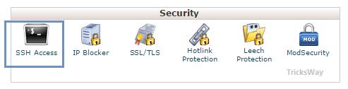SSH in C panel
