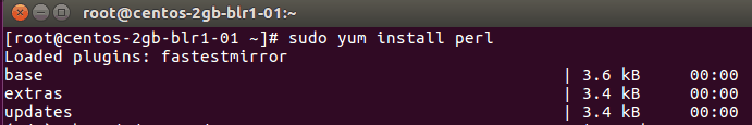 Check Perl for Cpanel Installation